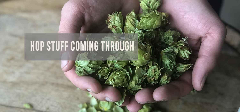 Image of hop-stuff-coming-through